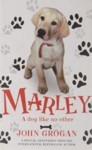 Marley A Dog Like No Other