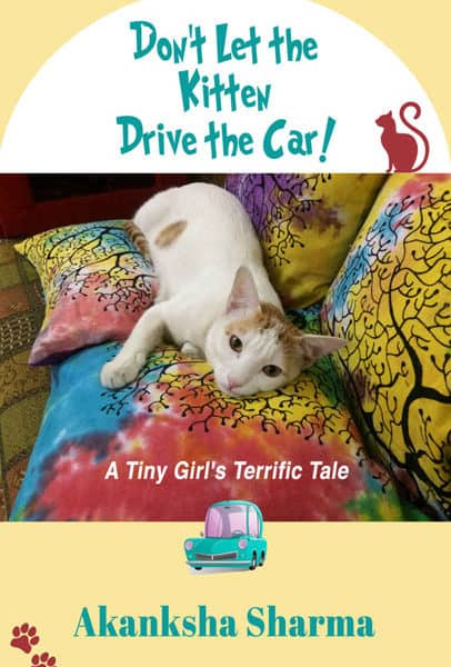 Don't Let the Kitten Drive the Car