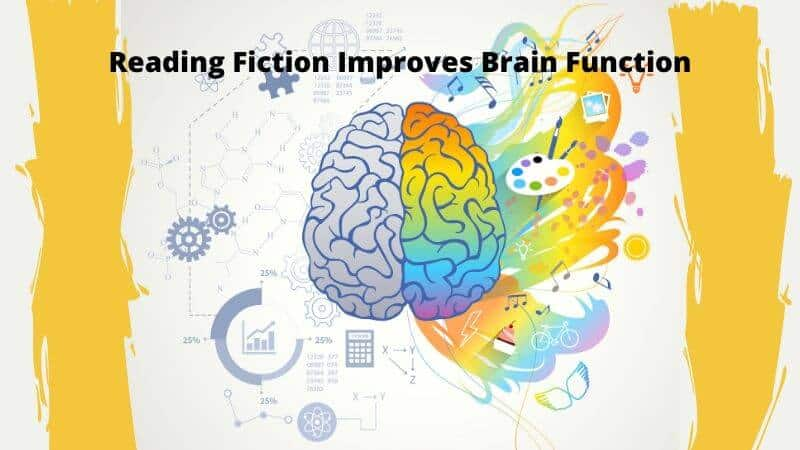 Reading Fiction Can Improve Brain Function And Imagination